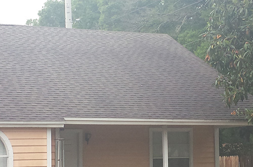 Roof Cleaning To Remove Mold And Algae